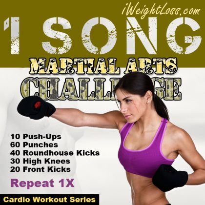 1 Song Martial Arts Challenge